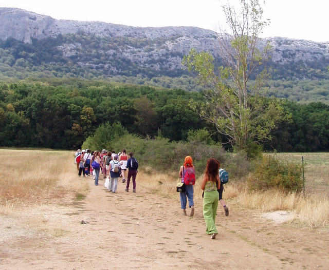 Spanish pilgrims entering the woods of La Sainte-Baume